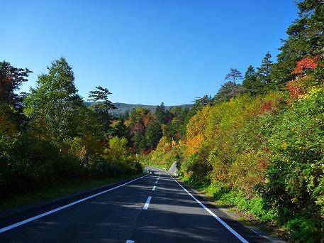 紅葉を見に行こう74(2010.10.8)