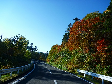 紅葉を見に行こう75(2010.10.8)
