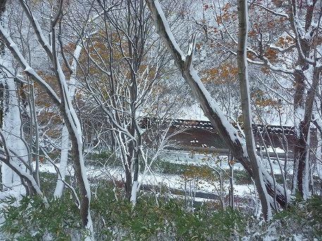 峡雲荘03(2010.11.3)