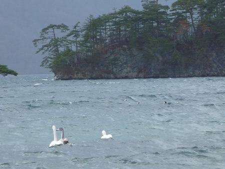 マニハチ探検隊vol.4 14(2010.11.14)十和田湖
