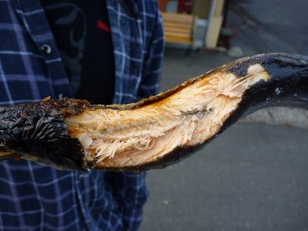 マニハチ探検隊vol.4 32(2010.11.14)十和田湖