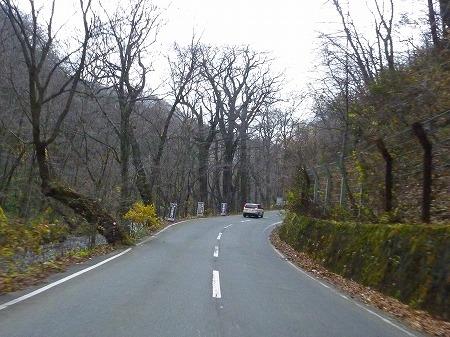 マニハチ探検隊vol.4 42(2010.11.14)十和田湖