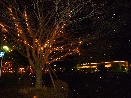 八幡平ロイヤルホテル04(2010.12.7)
