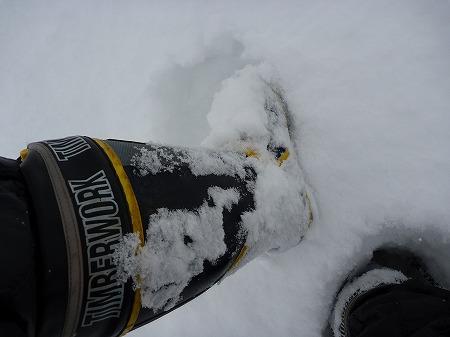 冬の焼走り熔岩流08(2010.12.27)