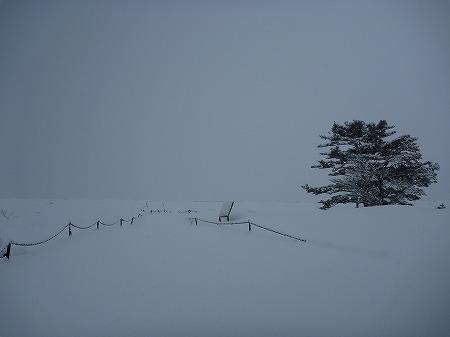 冬の焼走り熔岩流09(2010.12.27)