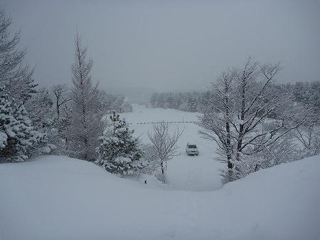 冬の焼走り熔岩流10(2010.12.27)
