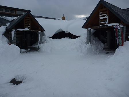 雪だるまん4号捜索01(2011.1.4)