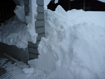 雪だるまん4号捜索02(2011.1.4)