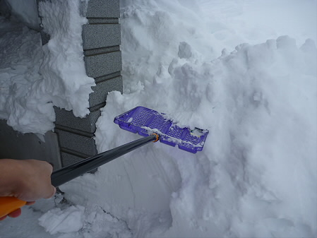 雪だるまん4号捜索03(2011.1.4)