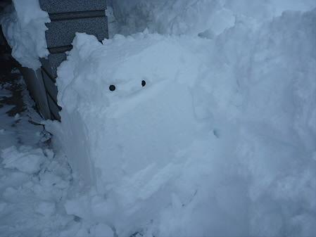 雪だるまん4号捜索05(2011.1.4)