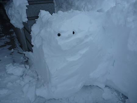 雪だるまん4号捜索06(2011.1.4)