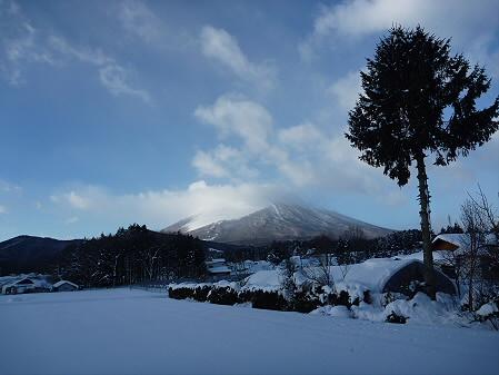 平笠の岩手山と木と家と(2011.1.13)