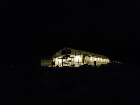 サラダファームのビニールハウス01(2011.1.19)