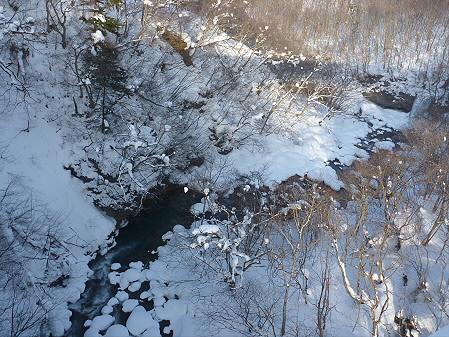 森の大橋02(2011.1.21)
