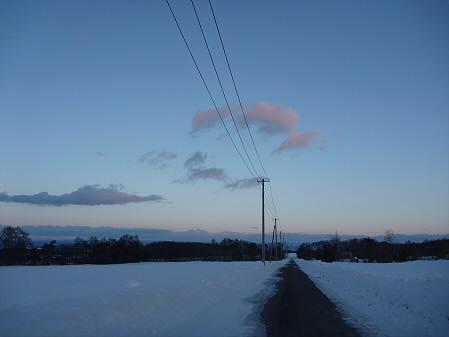 トトロの家付近(2011.1.25)