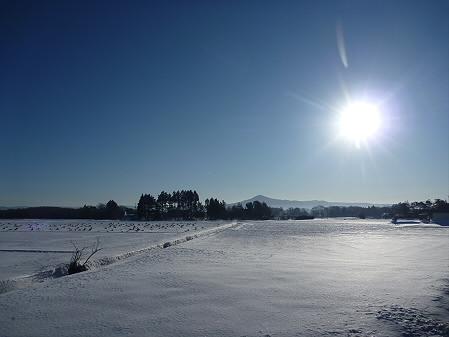 平笠の田んぼと朝日(2011.1.27)