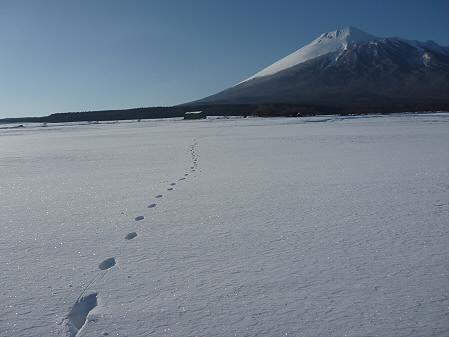 上坊牧野の足跡03(2011.2.2)