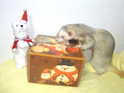 クリスマス2011①