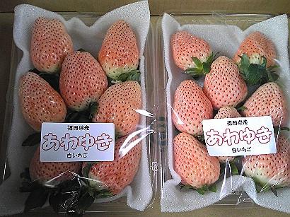 131白苺