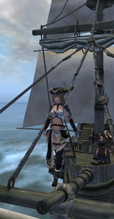 海賊王においらはなる?