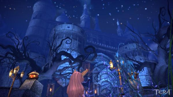 TERA_ScreenShot_20110813_185225.jpeg