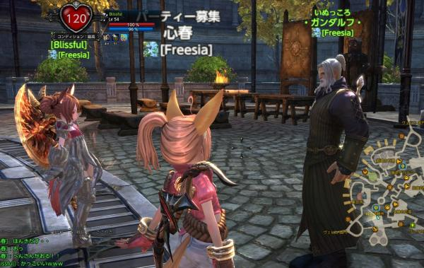 TERA_ScreenShot_20110904_163323.jpeg