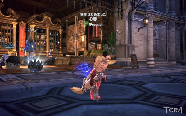 TERA_ScreenShot_20111122_121311.jpeg