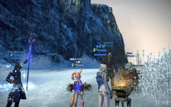 TERA_ScreenShot_20111122_224415.jpeg