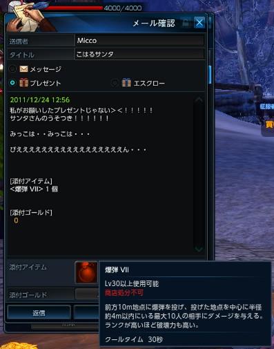 TERA_ScreenShot_20111224_125712.jpeg