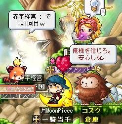 Maple3.jpg