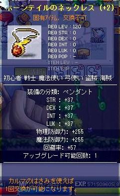Maple0311010.jpg