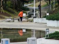 ブログ0329親水公園2RIMG1312
