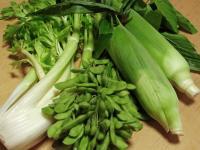 BL0811夏野菜3R1005069