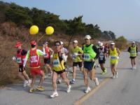 BL1121コチャンマラソン1-11RIMG0166