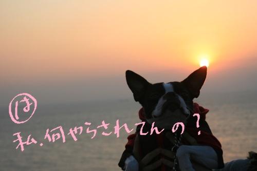 白浜 2011-099