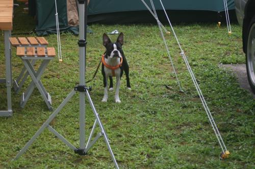 Camp+2010-167_convert_20100818004304.jpg