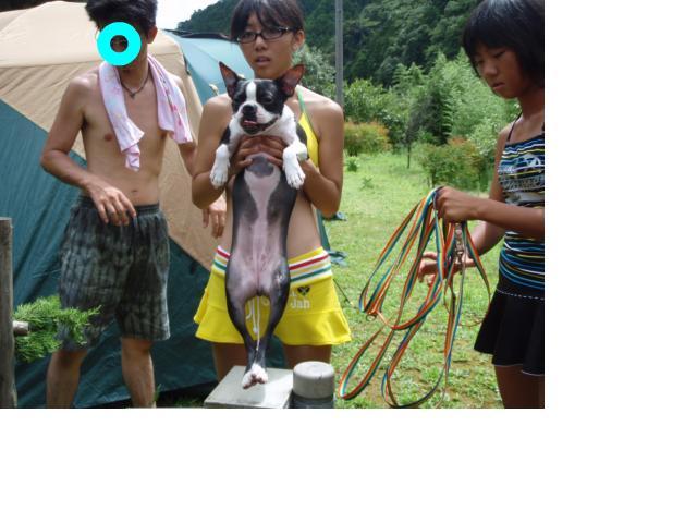 snap_marh6_201080115753.jpg