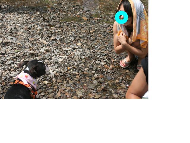 snap_marh6_201084234730.jpg