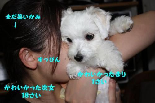 IMG_0048_convert_20100506104408縺セ5譛茨シ匁律_convert_20100903181435