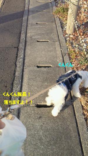 NEC_0233_convert_20110215180746.jpg