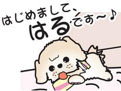 __tn_haru.jpg