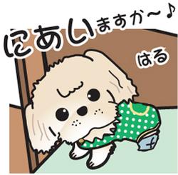 __tn_haru_2.jpg