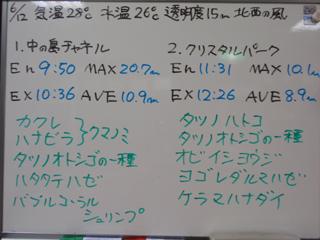 100612bloga.jpg