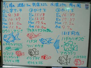 100813bloga.jpg