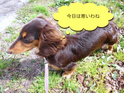Apr_7_2012_828.jpg
