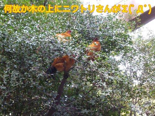 Jan_19_2013_122.jpg
