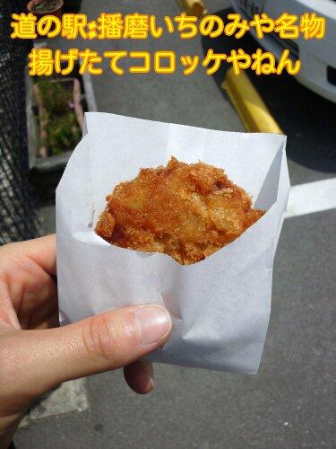 Jun_11_2012_86.jpg