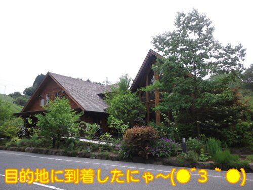 Jun_4_2012_283.jpg