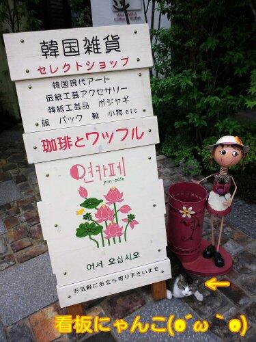 May_11_2012_709.jpg