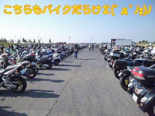 Oct_26_2012_66.jpg